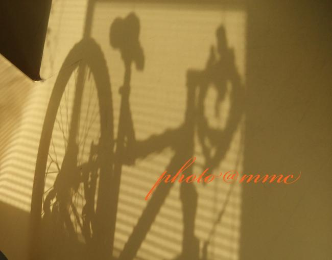 自転車影.jpg